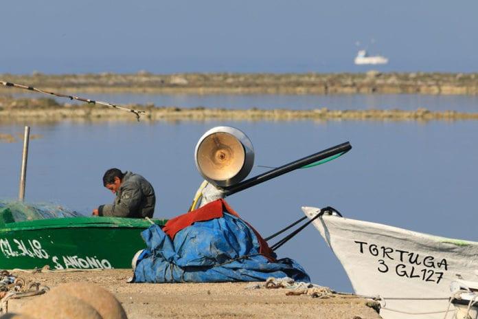 Pescatori a Porto Cesareo